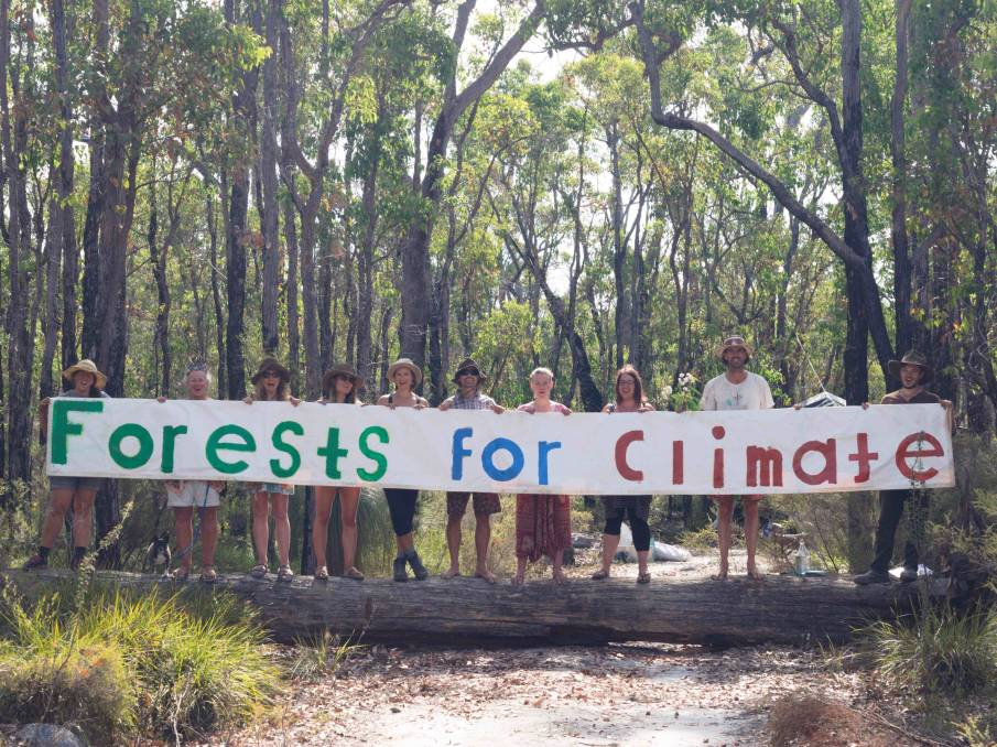 Western Australian Forest Alliance are calling for logging to stop in Helms Forest near Nannup, which is home to red-tailed, Carnabys and Baudins cockatoos.Image supplied.